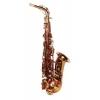 THEO WANNE - Alto Saxophone - SHAKTI