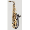 ANTIGUA - Alto Saxophone - AS4240BG