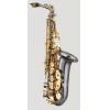 ANTIGUA - Alto Saxophone - AS4240BG