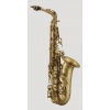 ANTIGUA - Alto Saxophone - AS4240CB