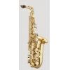 ANTIGUA - Alto Saxophone - AS2150LQ